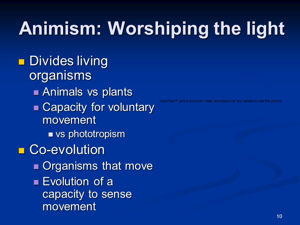 10 Animism: Worshiping the light Divides living organisms Divides living organisms Animals vs plants Animals vs plants Capacity for voluntary movement Capacity for voluntary movement vs phototropism vs phototropism Co-evolution Co-evolution Organisms that move Organisms that move Evolution of a capacity to sense movement Evolution of a capacity to sense movement