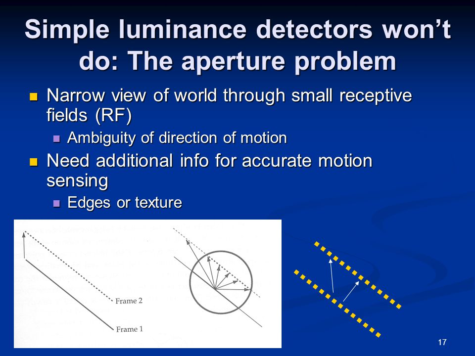 17 Simple luminance detectors won't do: The aperture problem Narrow view of world through small receptive fields (RF) Narrow view of world through small receptive fields (RF) Ambiguity of direction of motion Ambiguity of direction of motion Need additional info for accurate motion sensing Need additional info for accurate motion sensing Edges or texture Edges or texture