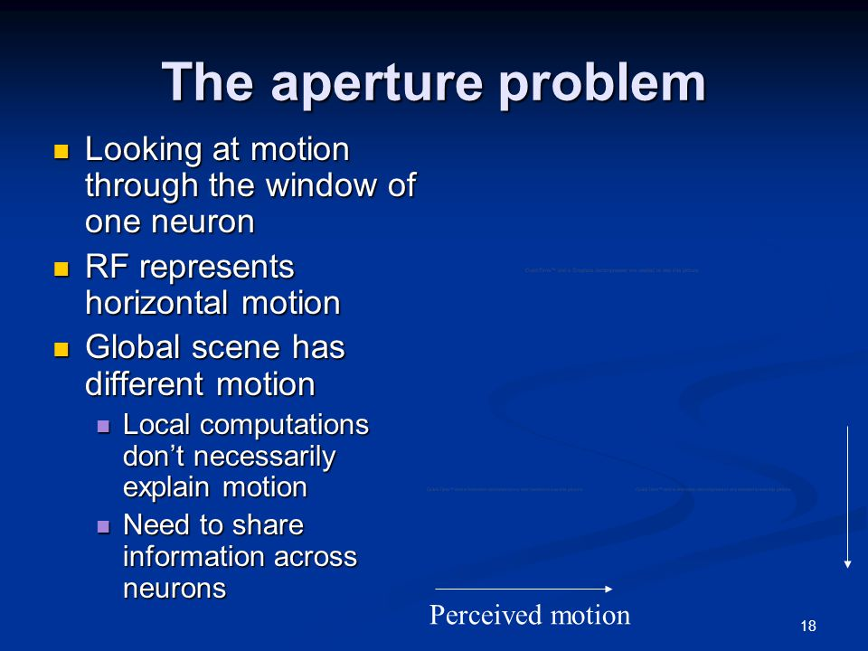 18 The aperture problem Looking at motion through the window of one neuron Looking at motion through the window of one neuron RF represents horizontal motion RF represents horizontal motion Global scene has different motion Global scene has different motion Local computations don't necessarily explain motion Local computations don't necessarily explain motion Need to share information across neurons Need to share information across neurons Perceived motion