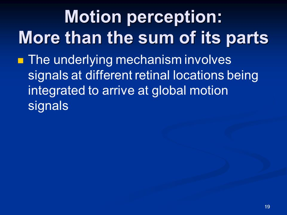 19 Motion perception: More than the sum of its parts The underlying mechanism involves signals at different retinal locations being integrated to arrive at global motion signals