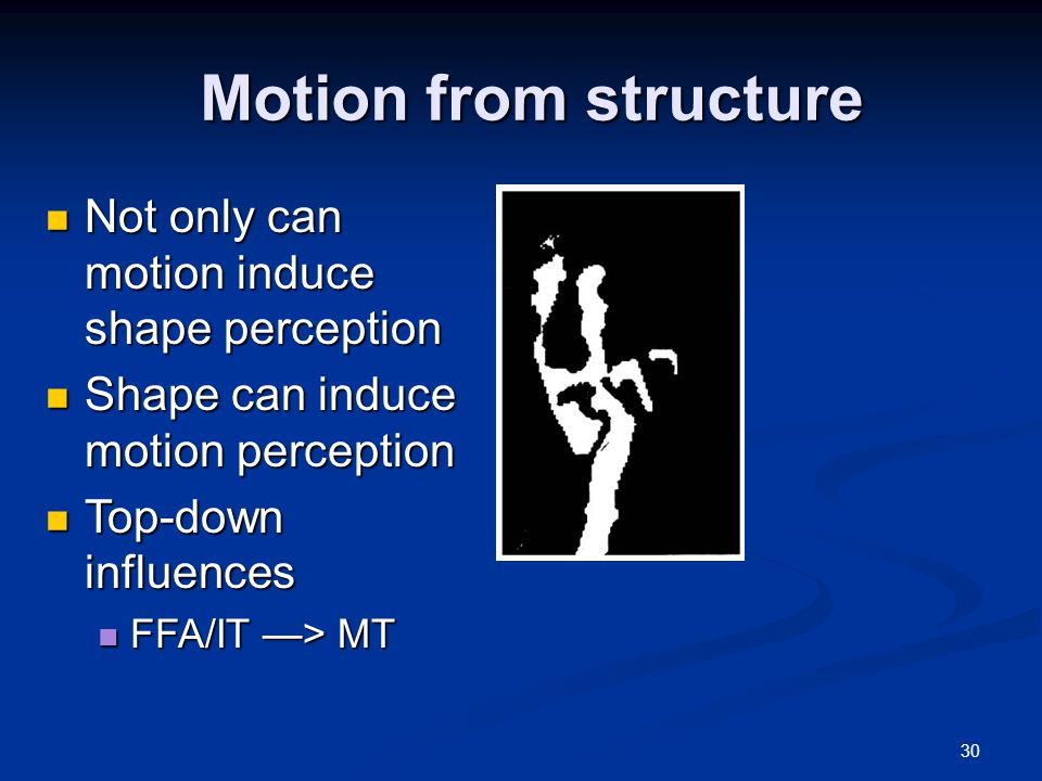 30 Motion from structure Not only can motion induce shape perception Not only can motion induce shape perception Shape can induce motion perception Shape can induce motion perception Top-down influences Top-down influences FFA/IT —> MT FFA/IT —> MT