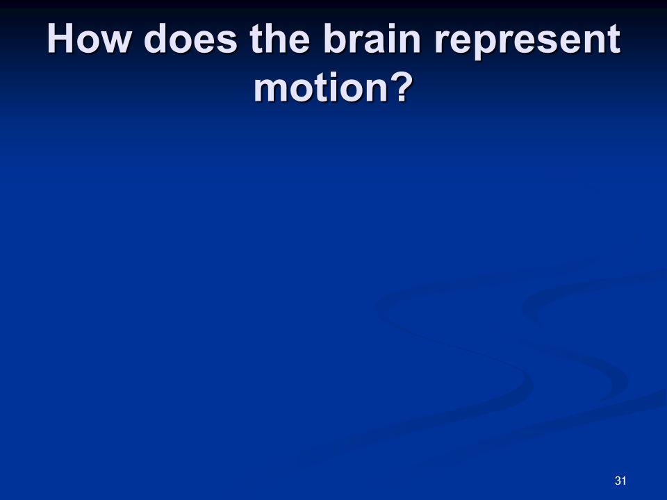 31 How does the brain represent motion