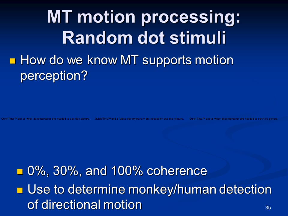35 MT motion processing: Random dot stimuli 0%, 30%, and 100% coherence 0%, 30%, and 100% coherence Use to determine monkey/human detection of directional motion Use to determine monkey/human detection of directional motion How do we know MT supports motion perception.