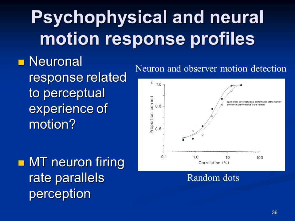36 Psychophysical and neural motion response profiles Neuronal response related to perceptual experience of motion.