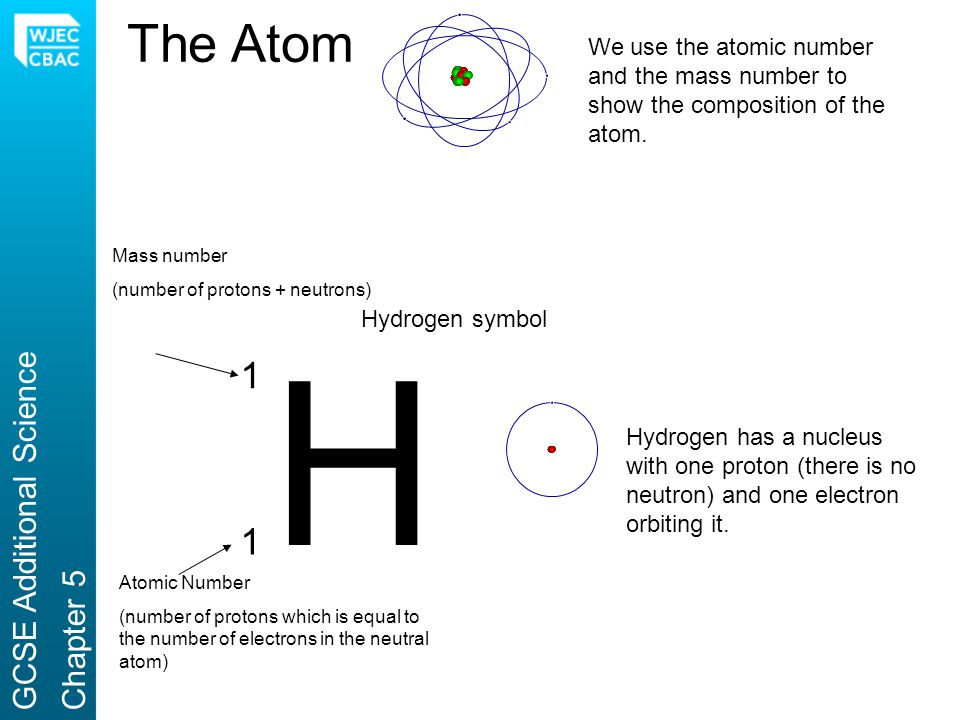 The Atom H We use the atomic number and the mass number to show the composition of the atom. 1 1 Hydrogen symbol Mass number (number of protons + neut
