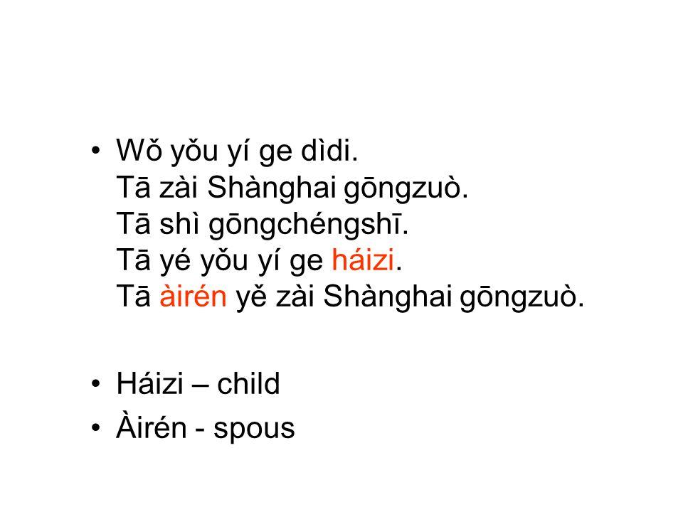 Wǒ yǒu yí ge dìdi. Tā zài Shànghai gōngzuò. Tā shì gōngchéngshī. Tā yé yǒu yí ge háizi. Tā àirén yě zài Shànghai gōngzuò. Háizi – child Àirén - spous