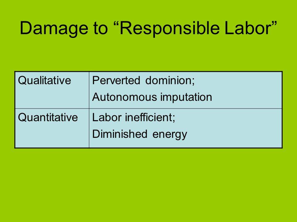 Damage to Responsible Labor QualitativePerverted dominion; Autonomous imputation QuantitativeLabor inefficient; Diminished energy