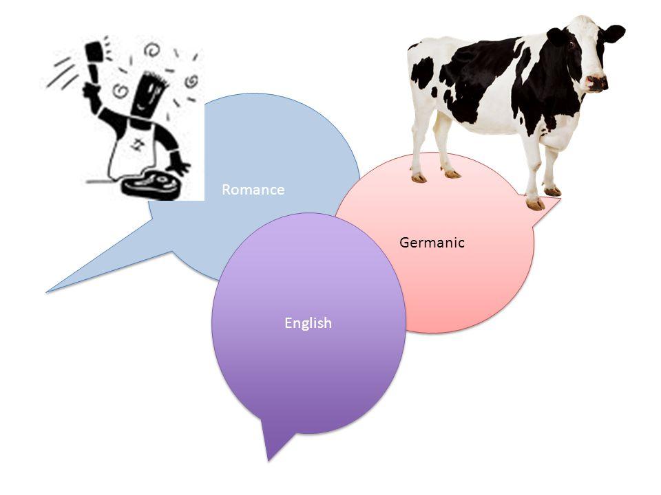 Romance Germanic English
