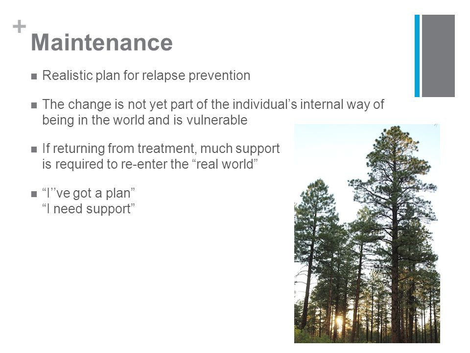 + Maintenance Realistic plan for relapse prevention The change is not yet part of the individual's internal way of being in the world and is vulnerable If returning from treatment, much support is required to re-enter the real world I''ve got a plan I need support