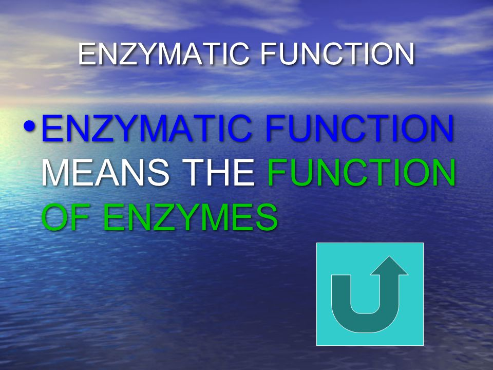 ENZYMATIC FUNCTION ENZYMATIC FUNCTION MEANS THE FUNCTION OF ENZYMES