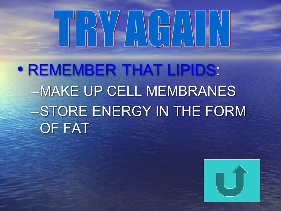 REMEMBER THAT LIPIDS: –MAKE UP CELL MEMBRANES –STORE ENERGY IN THE FORM OF FAT REMEMBER THAT LIPIDS: –MAKE UP CELL MEMBRANES –STORE ENERGY IN THE FORM OF FAT