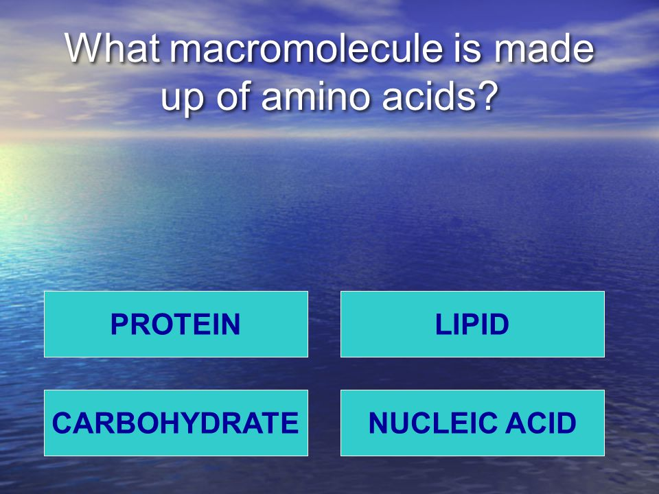 What macromolecule is made up of amino acids? PROTEIN NUCLEIC ACIDCARBOHYDRATE LIPID