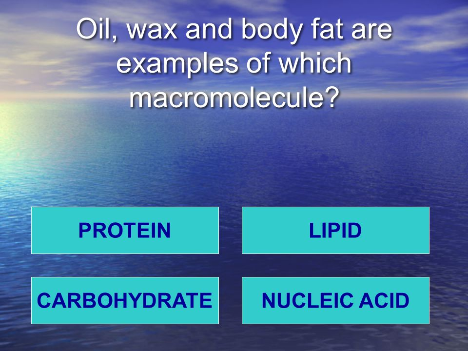 Oil, wax and body fat are examples of which macromolecule PROTEIN NUCLEIC ACIDCARBOHYDRATE LIPID