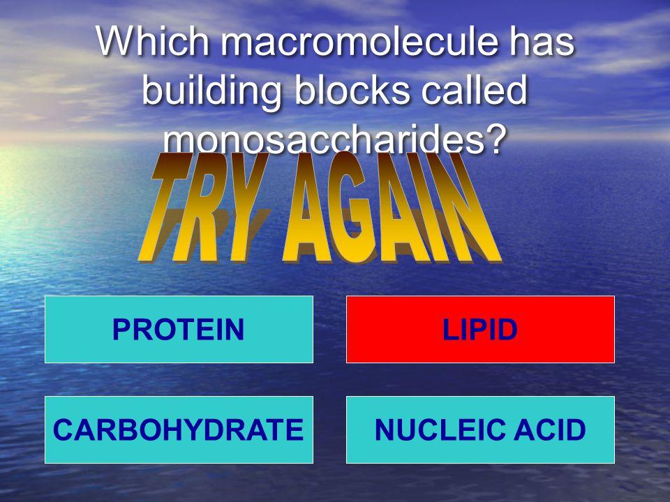 Which macromolecule has building blocks called monosaccharides.