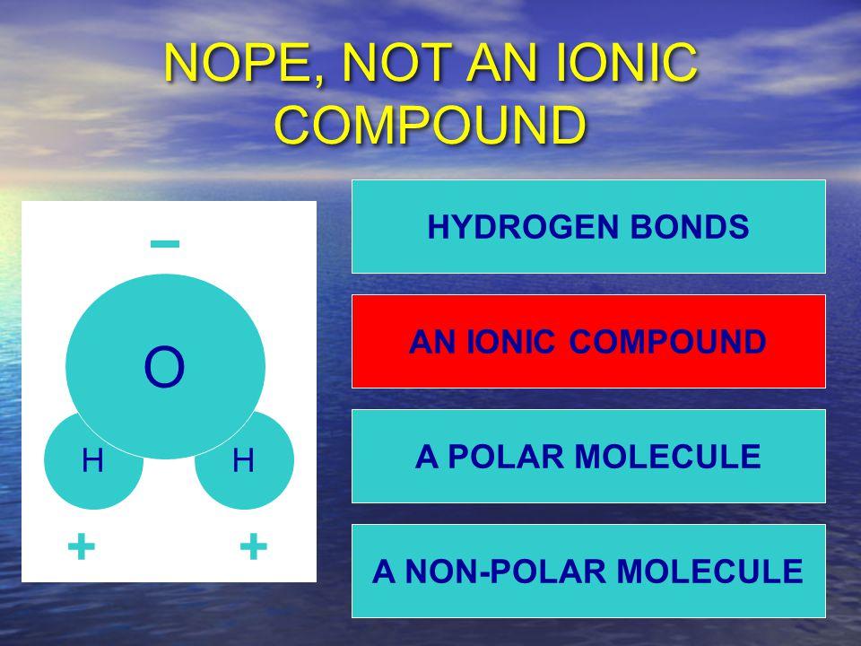 NOPE, NOT AN IONIC COMPOUND HH O ++ A NON-POLAR MOLECULE HYDROGEN BONDS AN IONIC COMPOUND A POLAR MOLECULE