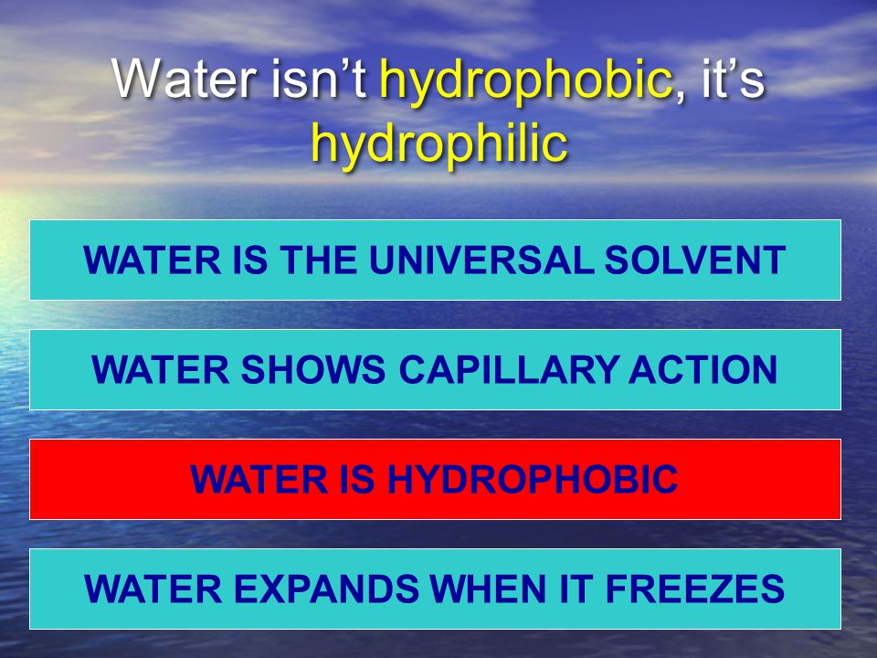 Water isn't hydrophobic, it's hydrophilic WATER IS THE UNIVERSAL SOLVENT WATER EXPANDS WHEN IT FREEZES WATER IS HYDROPHOBIC WATER SHOWS CAPILLARY ACTION