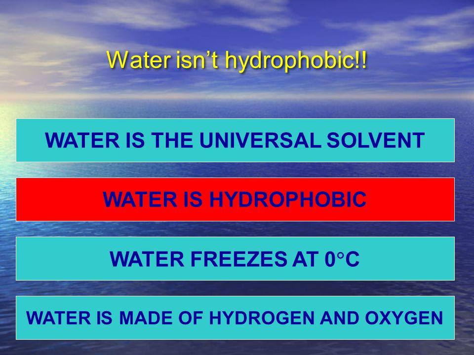 Water isn't hydrophobic!.