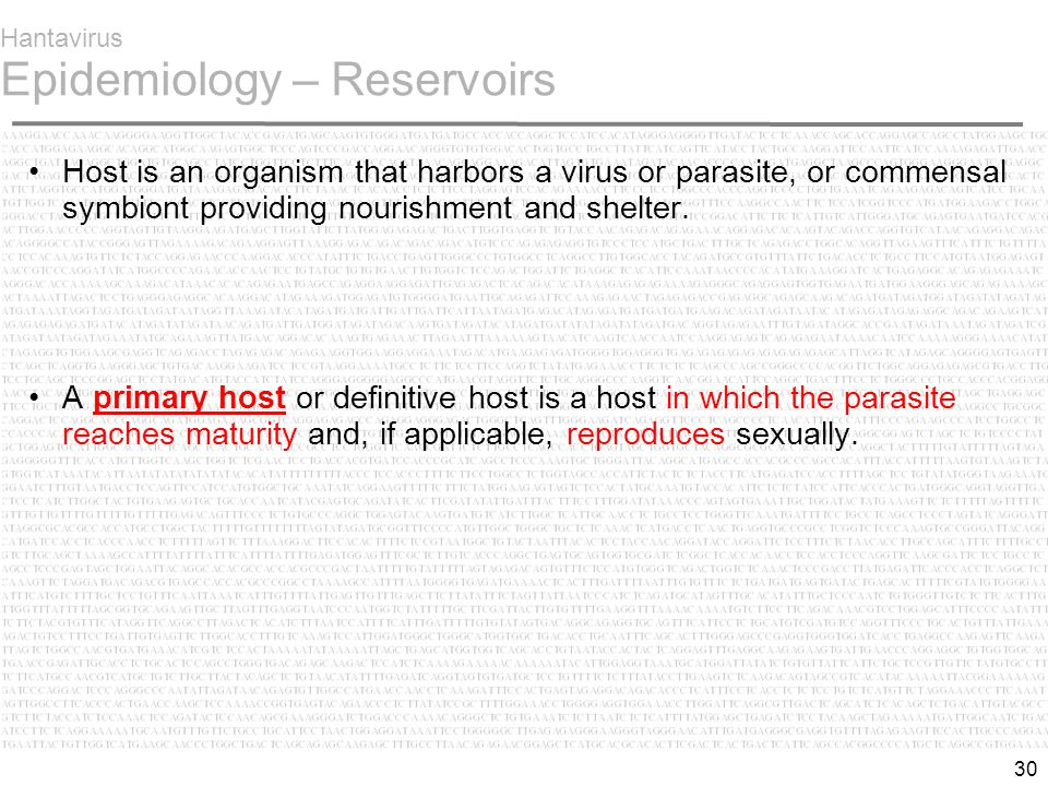 30 Hantavirus Epidemiology – Reservoirs Host is an organism that harbors a virus or parasite, or commensal symbiont providing nourishment and shelter.