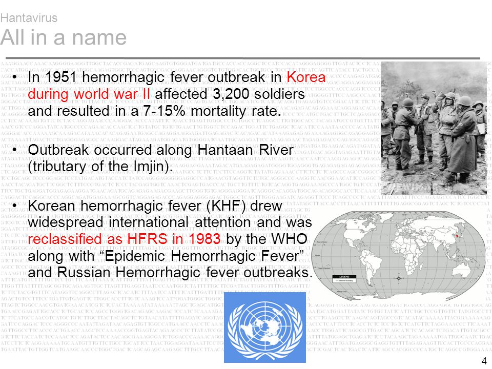 4 Hantavirus All in a name In 1951 hemorrhagic fever outbreak in Korea during world war II affected 3,200 soldiers and resulted in a 7-15% mortality rate.