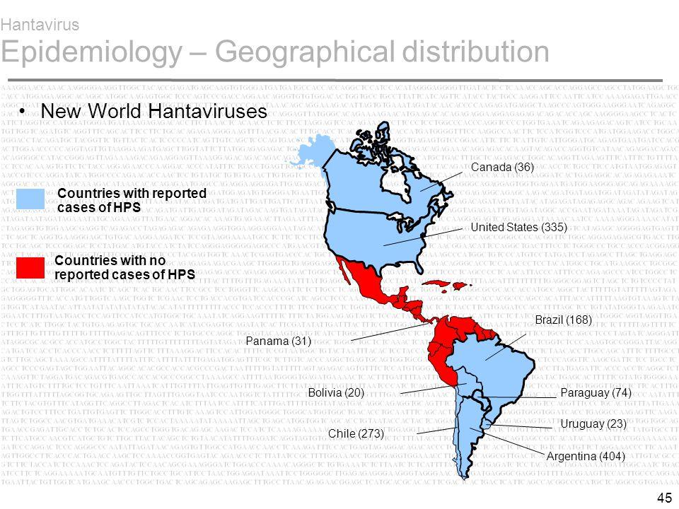 45 Hantavirus Epidemiology – Geographical distribution New World Hantaviruses Brazil (168) Paraguay (74) Uruguay (23) Argentina (404) United States (335) Canada (36) Panama (31) Chile (273) Bolivia (20) Countries with reported cases of HPS Countries with no reported cases of HPS