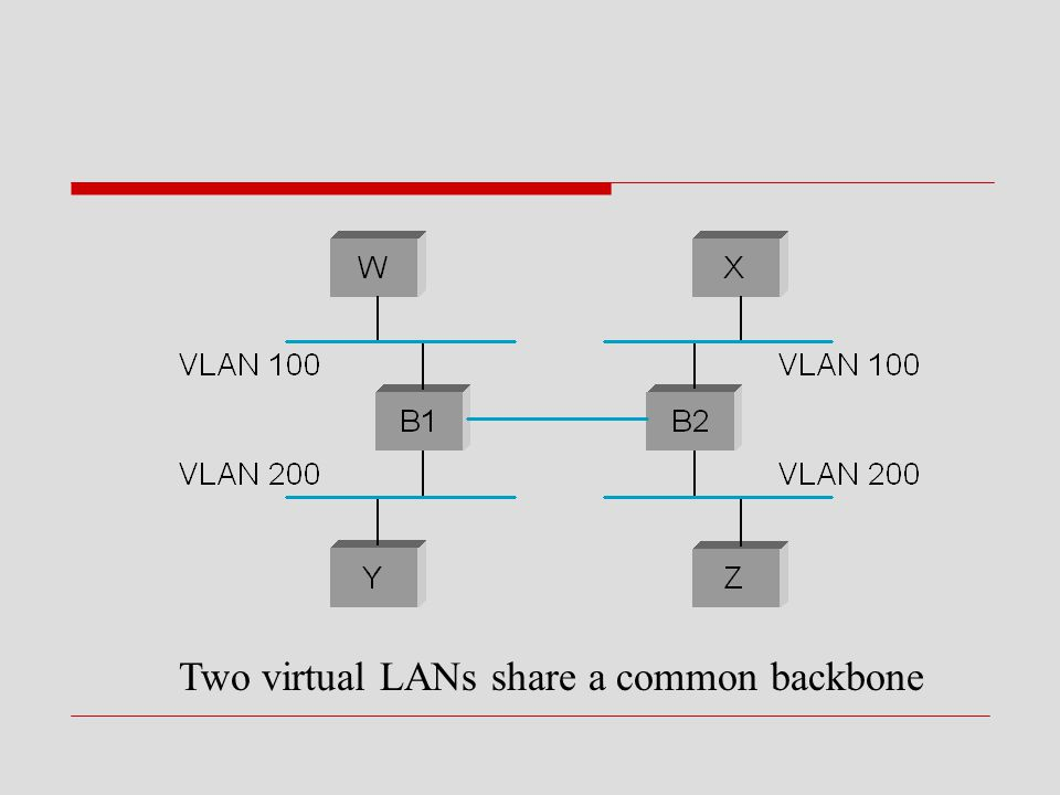 Two virtual LANs share a common backbone