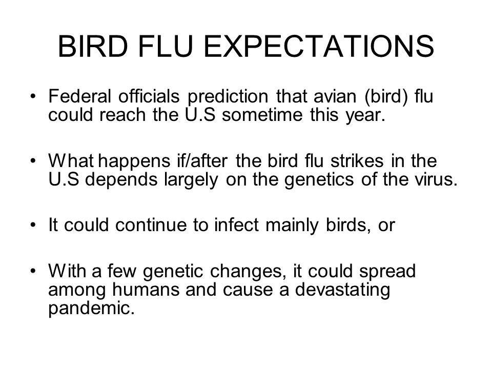 BIRD FLU EXPECTATIONS Federal officials prediction that avian (bird) flu could reach the U.S sometime this year. What happens if/after the bird flu st