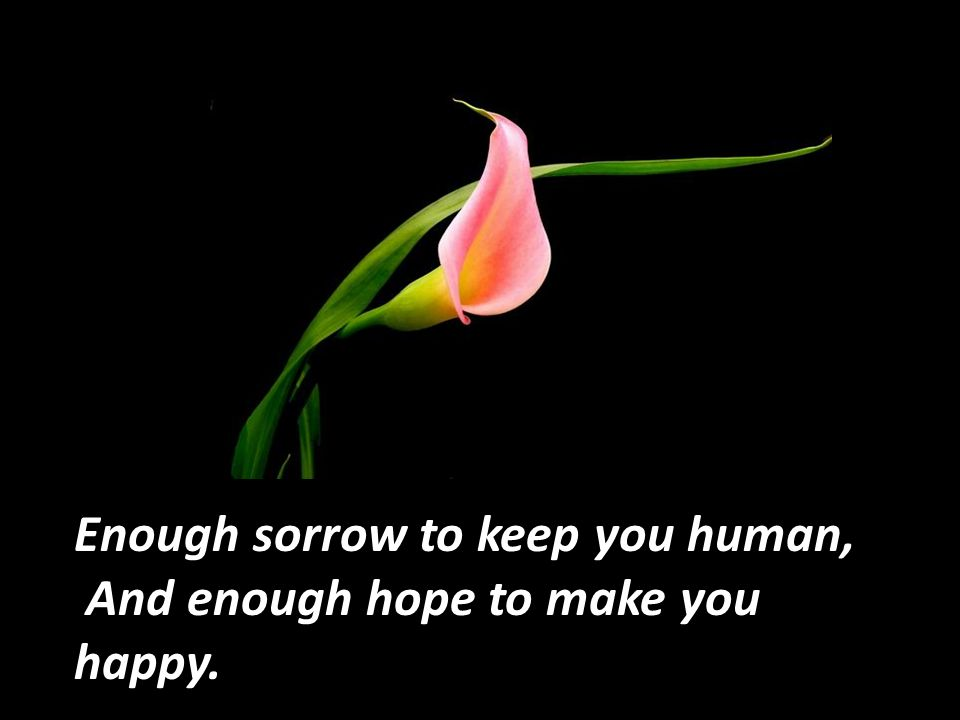 May you have Enough happiness to make you sweet, Enough trials to make you strong,