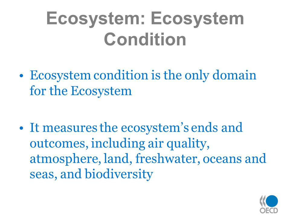 Ecosystem condition is the only domain for the Ecosystem It measures the ecosystem's ends and outcomes, including air quality, atmosphere, land, freshwater, oceans and seas, and biodiversity