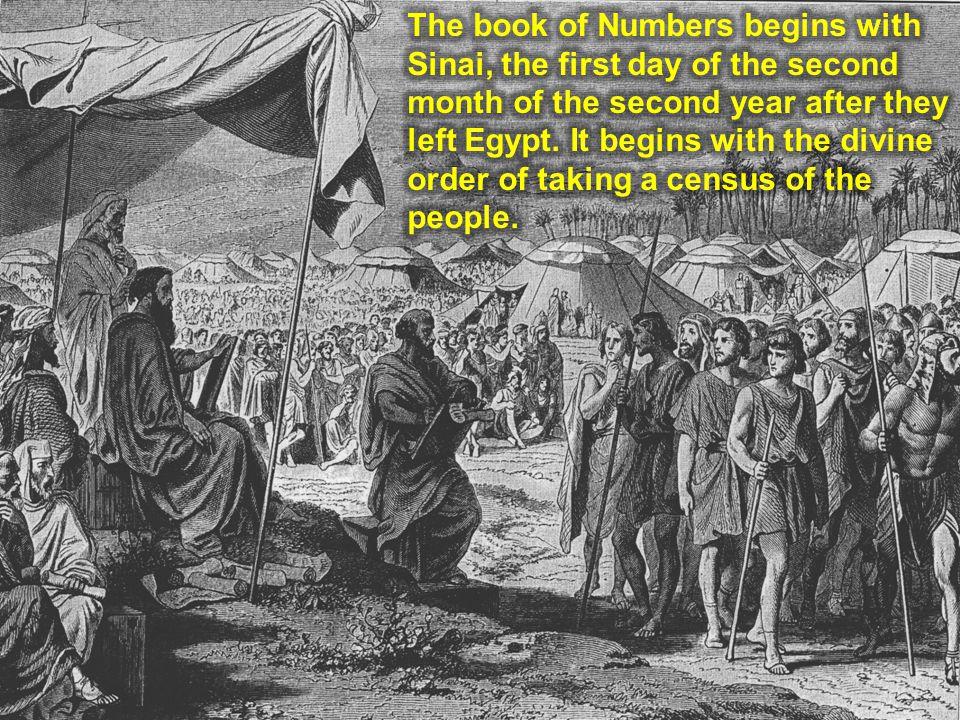 ---Reuben--- Reuben 46.500 Simeon 59.300 Gad 45.650 ---Judah--- Judah 74.600 Issachar 54.400 Zebulun 57.400 ---Ephraim--- Ephraim 40.500 Manasseh 32.200 Benjamin 35.400 ---Dan--- Dan 62.700 Asher 41.500 Naphtali 53.400 God showed Moses and Aaron the names of the representative from each tribe.