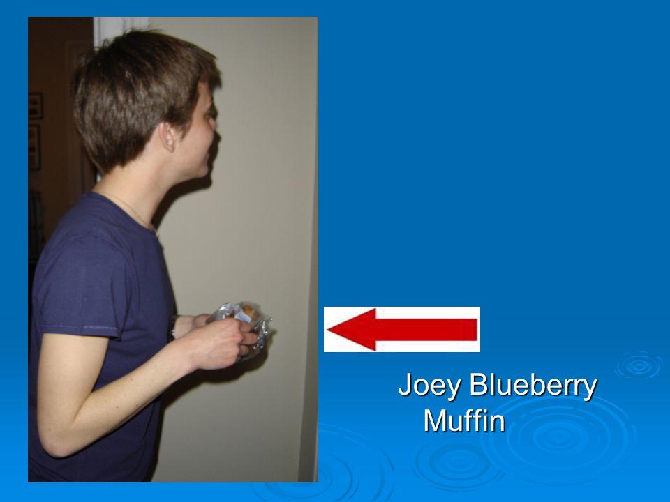 Joey Blueberry Muffin