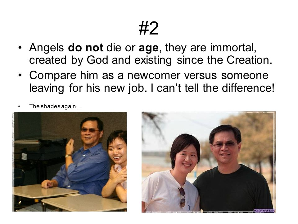 #2 Angels do not die or age, they are immortal, created by God and existing since the Creation.