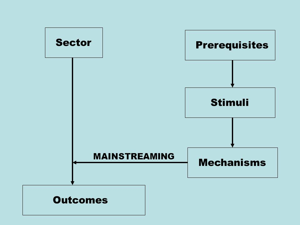 Sector Prerequisites Stimuli Mechanisms Outcomes MAINSTREAMING