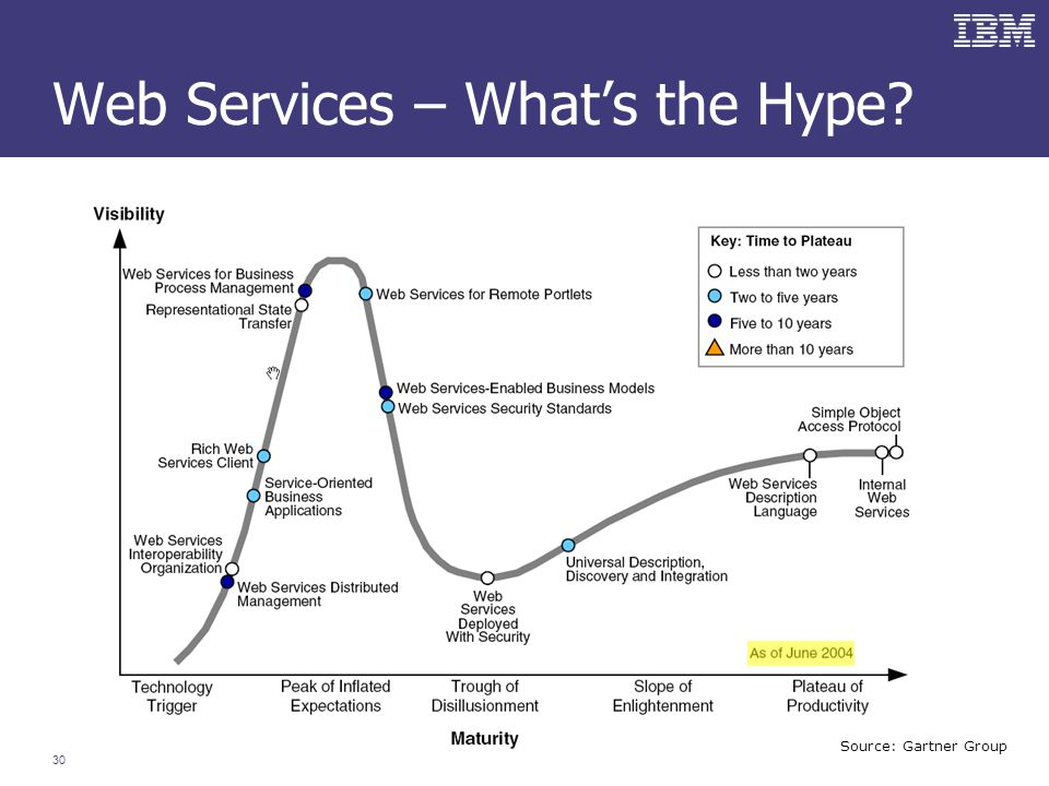 30 Web Services – What's the Hype Source: Gartner Group