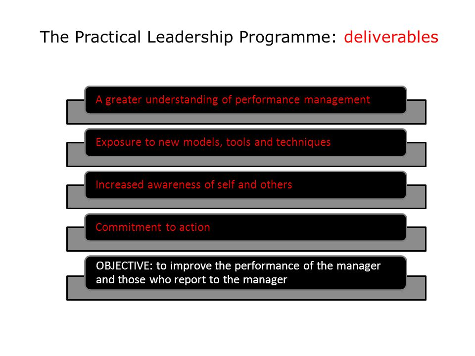 The Practical Leadership Programme: deliverables A greater understanding of performance managementExposure to new models, tools and techniquesIncrease