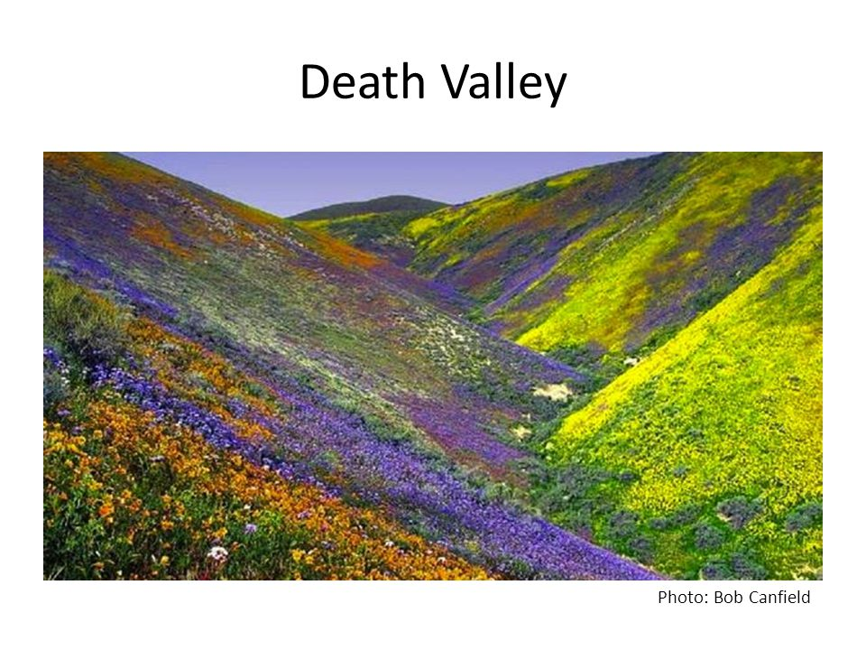 What comes to mind when you hear this name Death Valley Photo: Bob Canfield