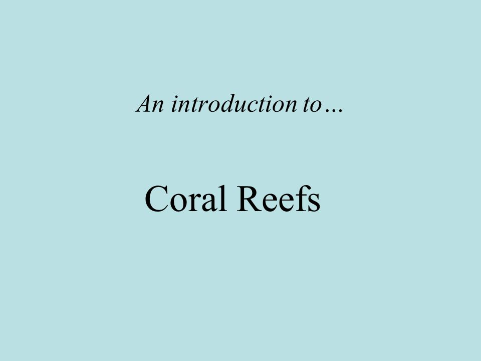 An introduction to… Coral Reefs