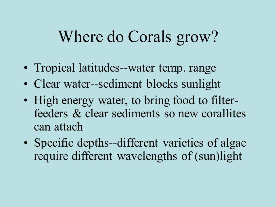 Where do Corals grow. Tropical latitudes--water temp.