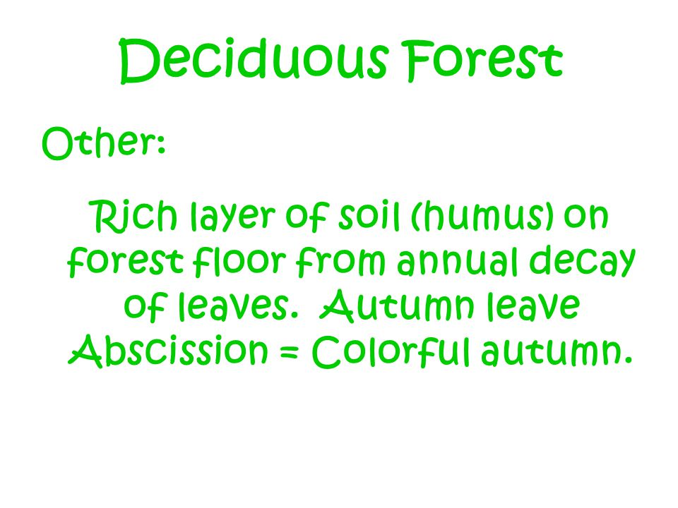 Deciduous Forest Other: Rich layer of soil (humus) on forest floor from annual decay of leaves.