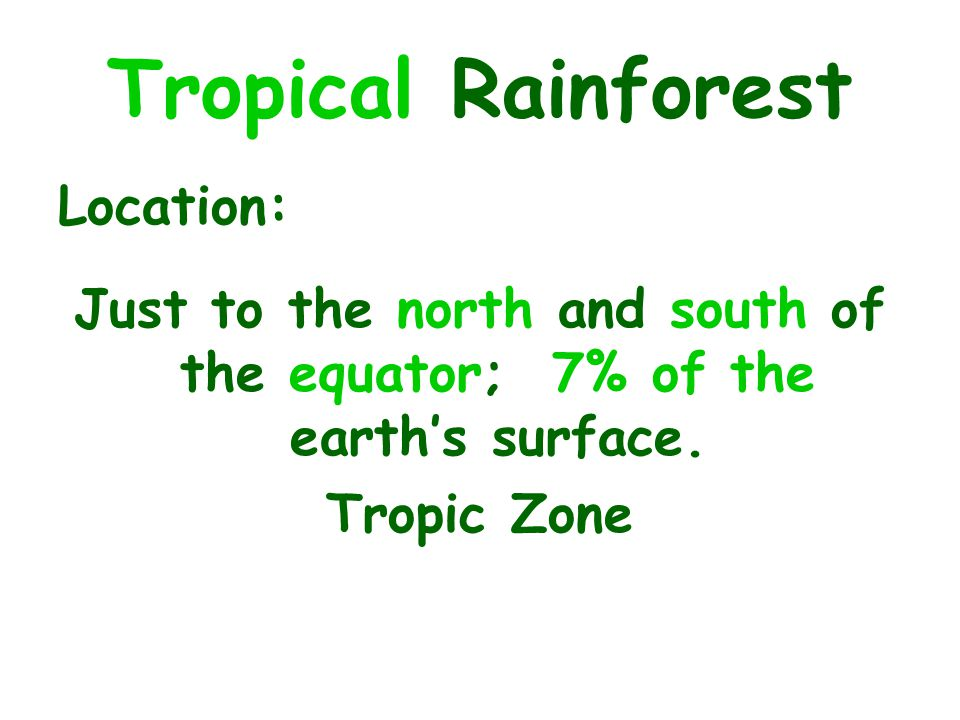 Tropical Rainforest Location: Just to the north and south of the equator; 7% of the earth's surface.