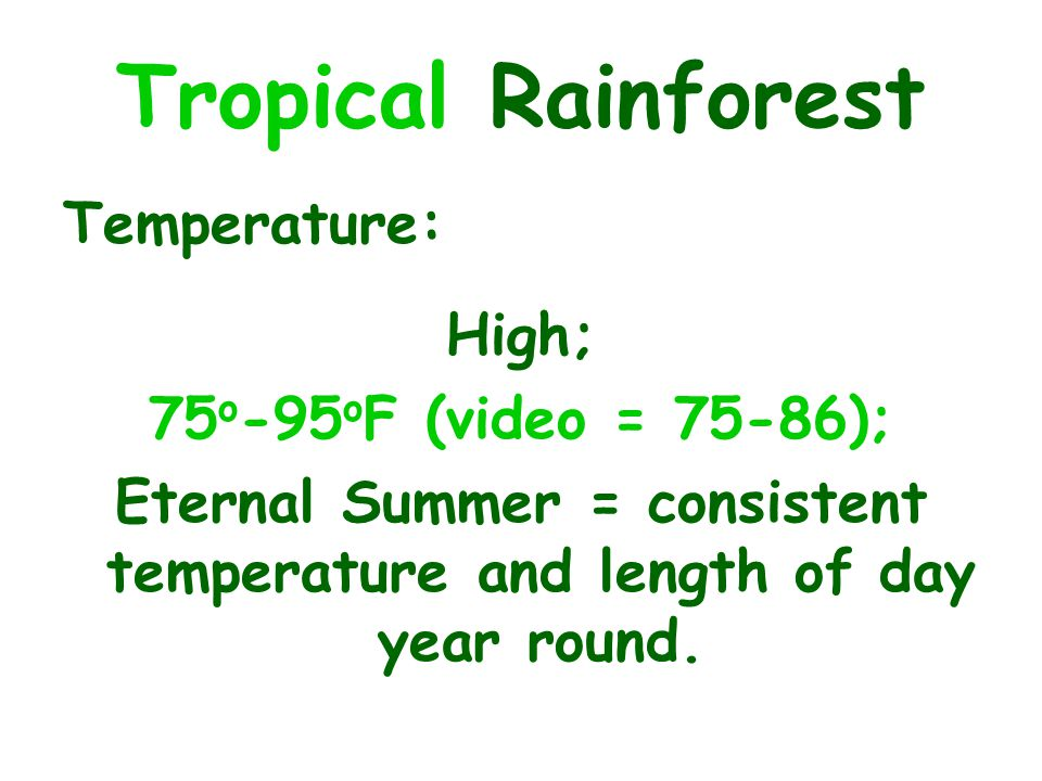 Temperature: High; 75 o -95 o F (video = 75-86); Eternal Summer = consistent temperature and length of day year round.