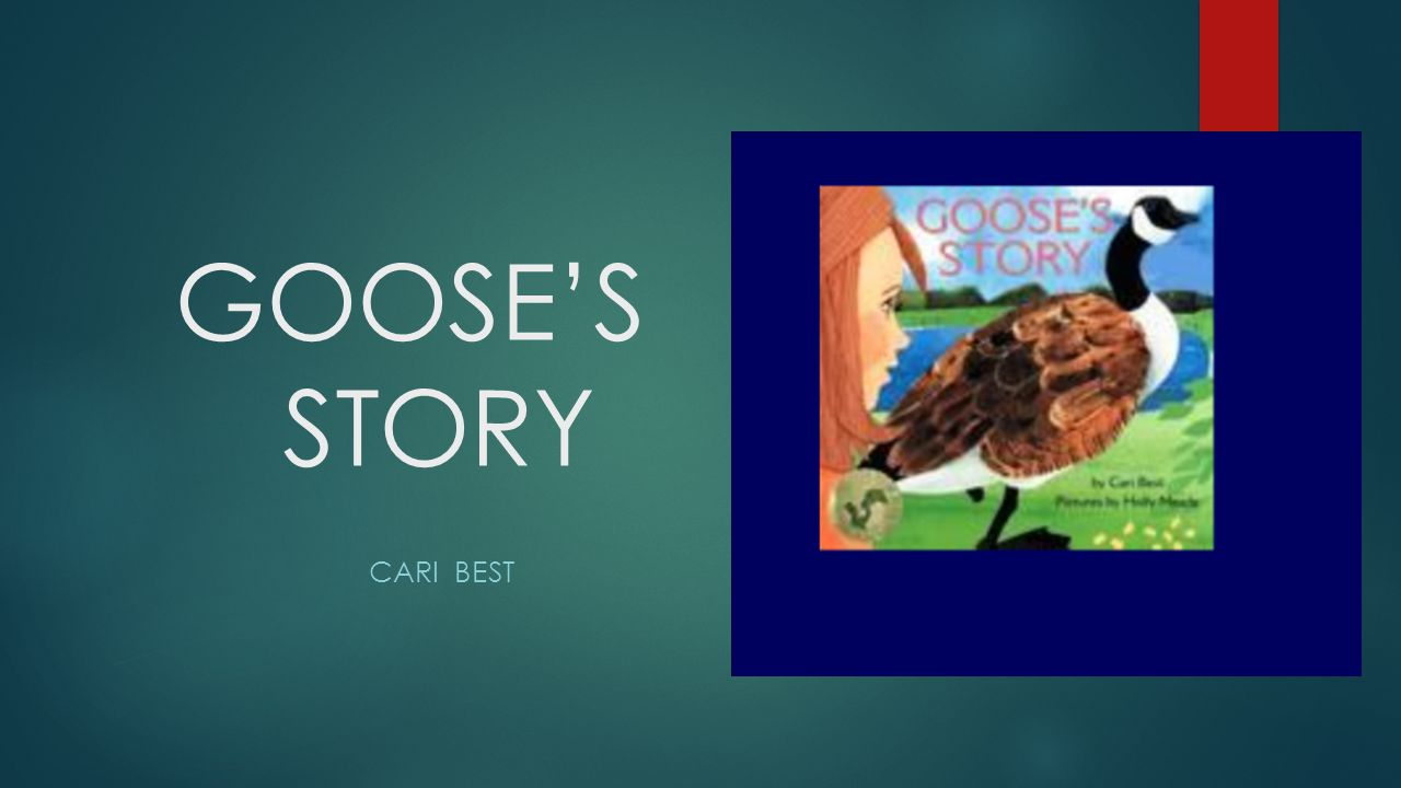 GOOSE'S STORY CARI BEST