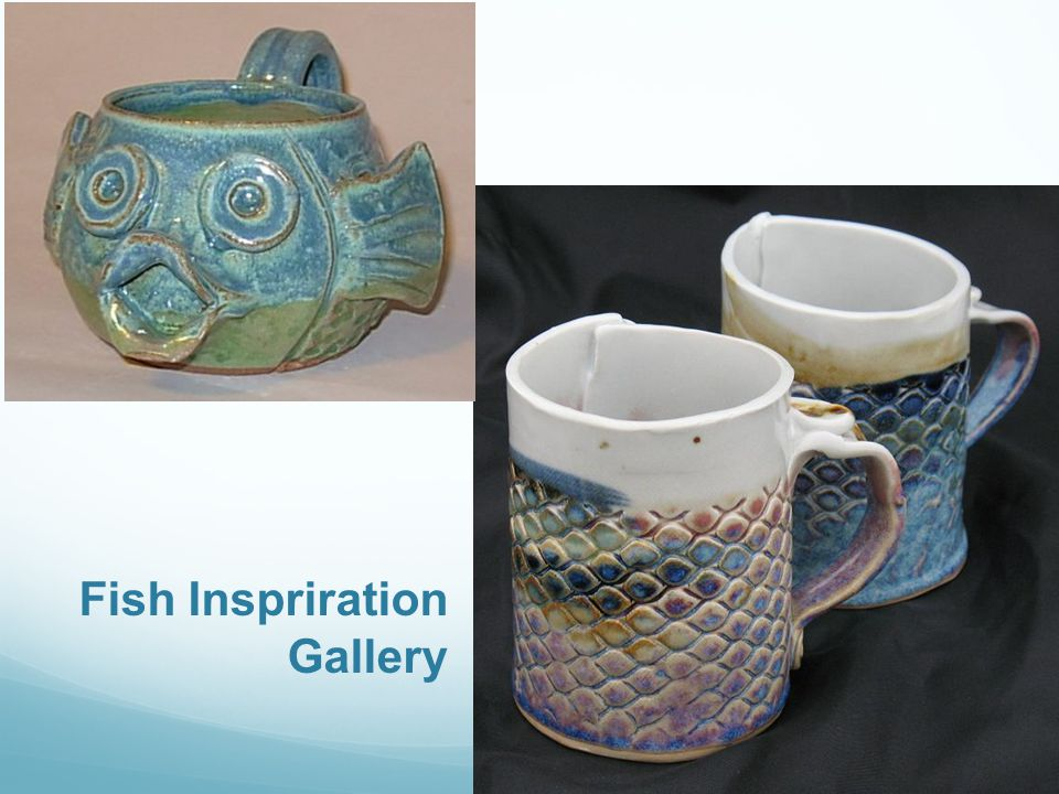 Fish Inspriration Gallery