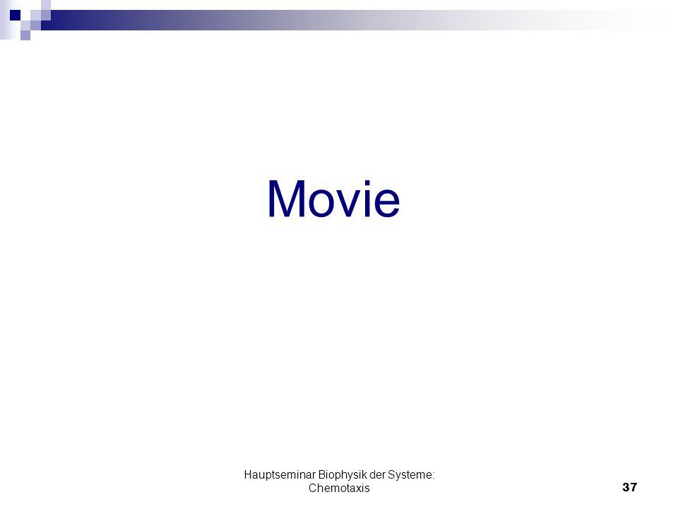 Hauptseminar Biophysik der Systeme: Chemotaxis37 Movie