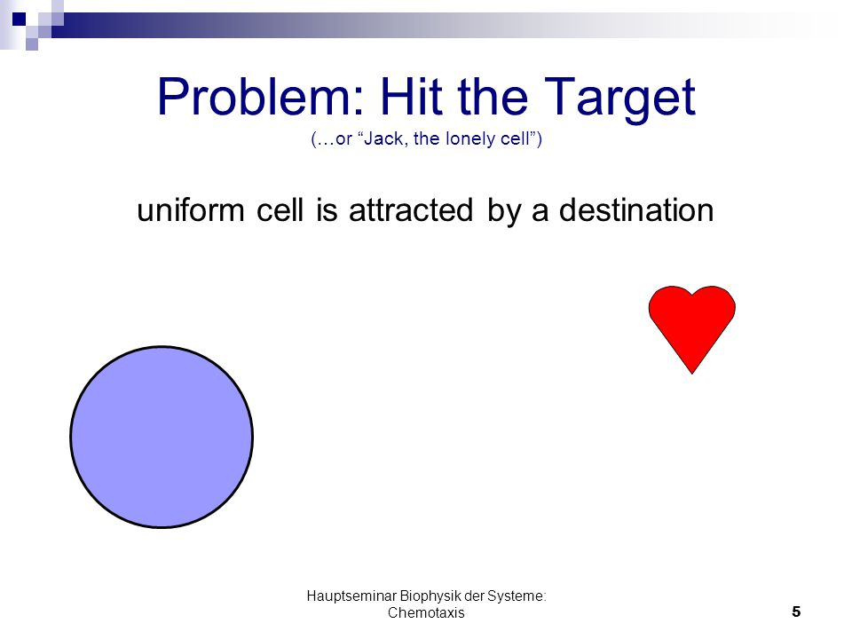 Hauptseminar Biophysik der Systeme: Chemotaxis5 Problem: Hit the Target (…or Jack, the lonely cell ) uniform cell is attracted by a destination