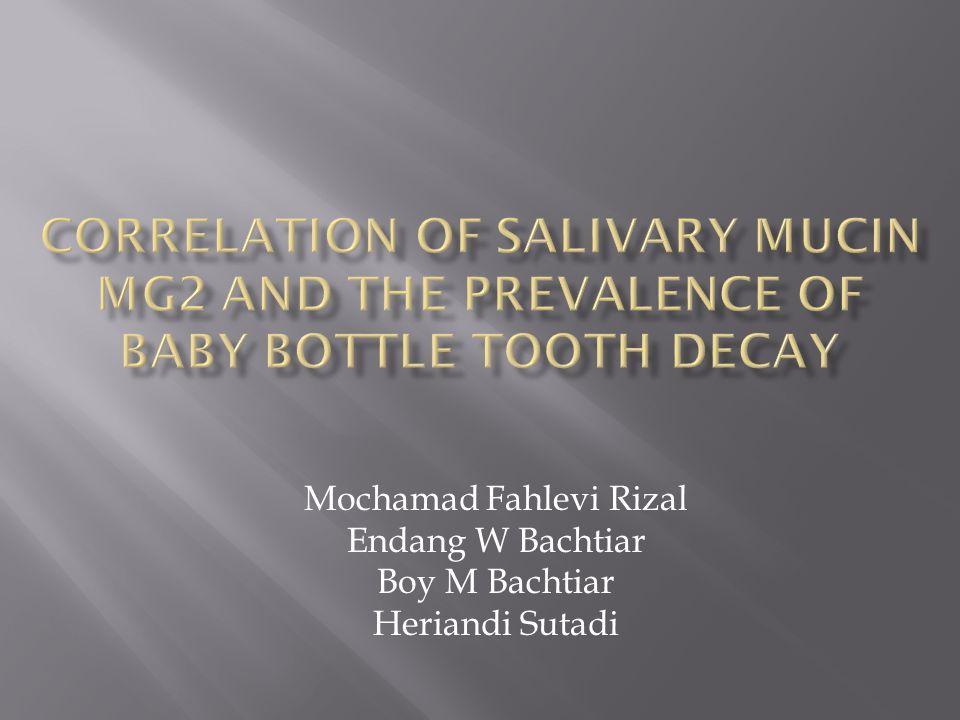 Mochamad Fahlevi Rizal Endang W Bachtiar Boy M Bachtiar Heriandi Sutadi