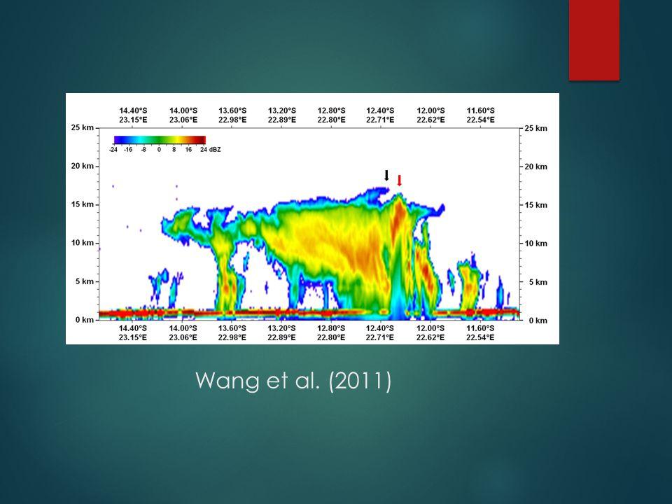 Wang et al. (2011)