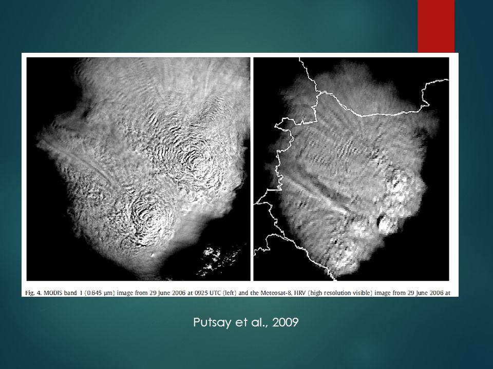 Putsay et al., 2009