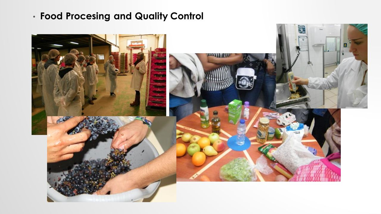 Food Procesing and Quality Control