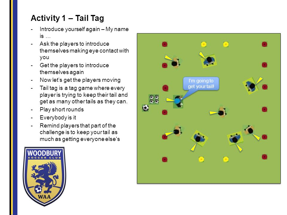 Activity 1 – Tail Tag -Introduce yourself again – My name is … -Ask the players to introduce themselves making eye contact with you -Get the players to introduce themselves again -Now let's get the players moving -Tail tag is a tag game where every player is trying to keep their tail and get as many other tails as they can.