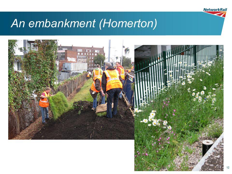 12 An embankment (Homerton)